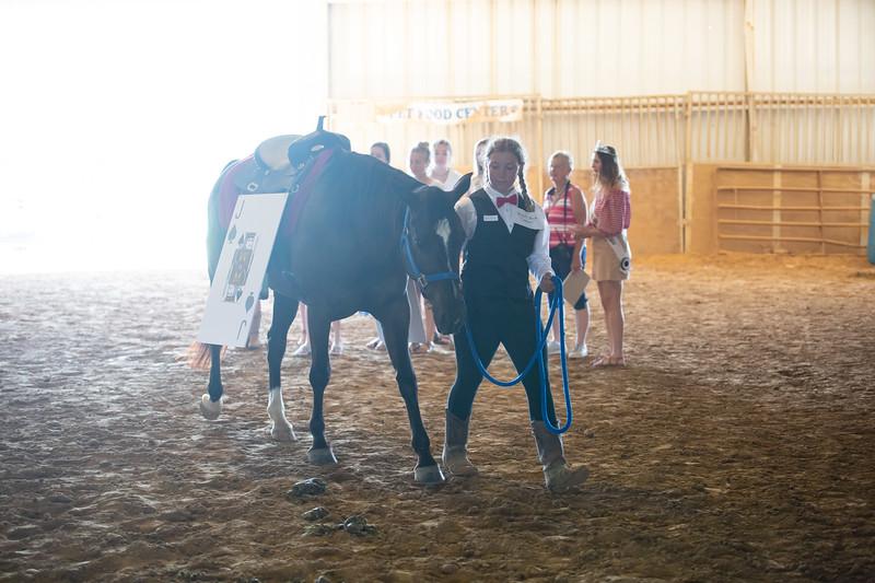 HorseCostume-57.jpg
