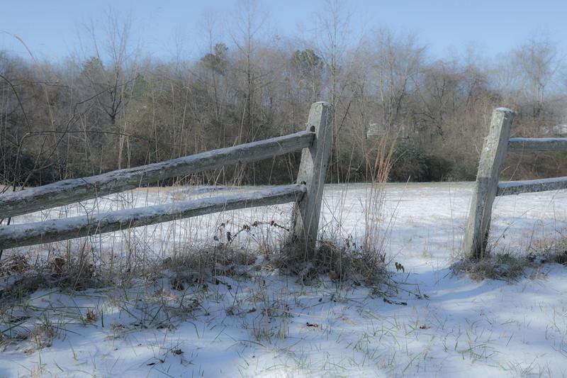 January Snow-13.jpg