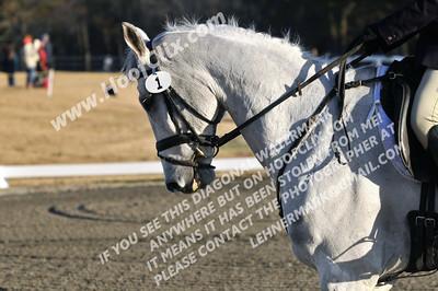 131201 USEA Horse Trial