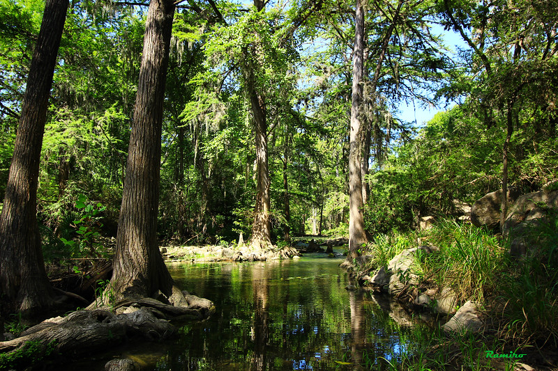 Honey Creek 7-11-15 225.jpg