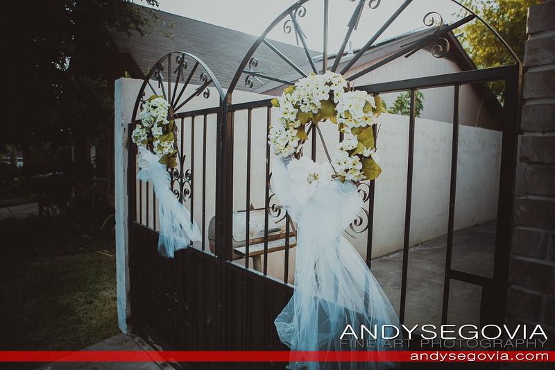 Andy Segovia Fine Art-1087-0094.jpg
