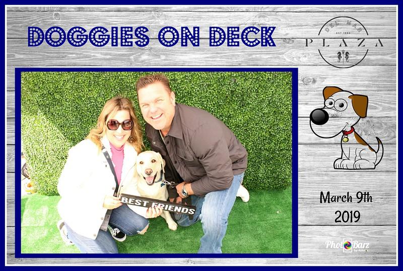 Doggys on Deck3.jpg