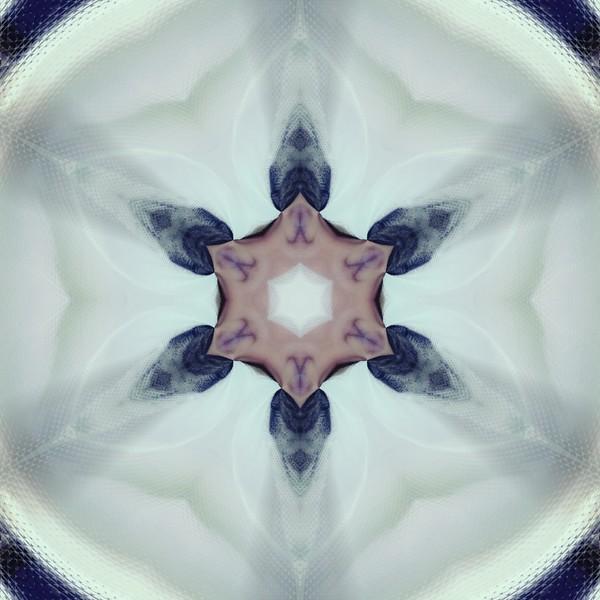 31314_mirror2.jpg