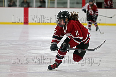 2013-14 Girls Prep School Hockey