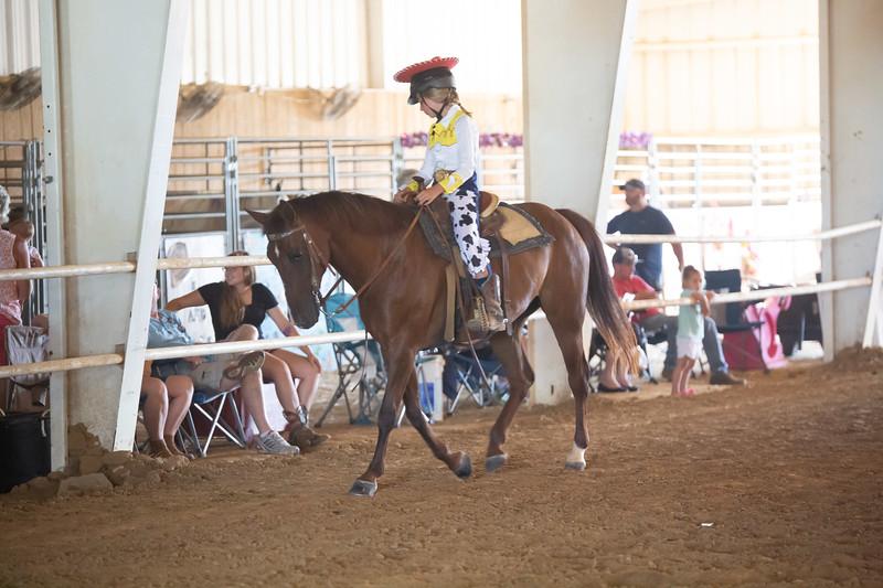 HorseCostume-19.jpg