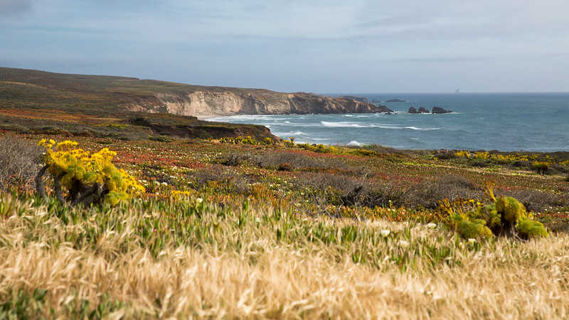 WS_California Coast--4.jpg