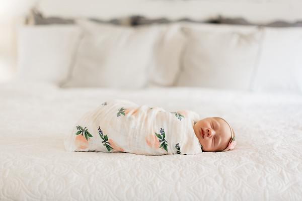 Baby Rosemary