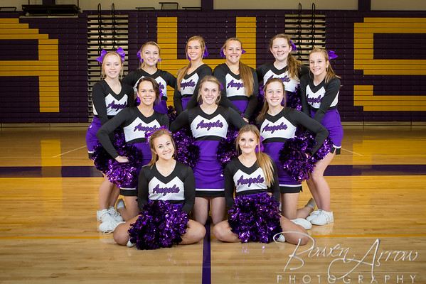 Cheer Team Winter 2016