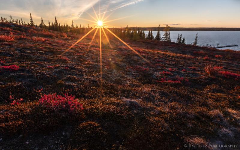 Glowing Tundra