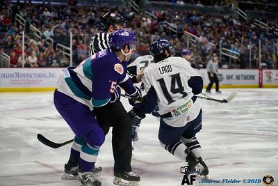 Jacksonville Icemen Vs Orlando Solar Bears 04/07/2019