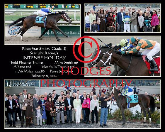 Risen Star Stakes 2014