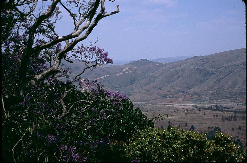 Madagasgar1_006.jpg