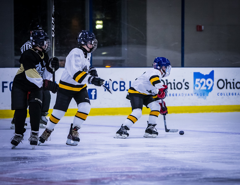 Bruins-32.jpg