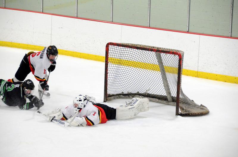 140111 Flames Hockey-126.JPG