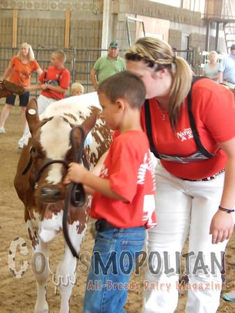 US National MS Heifer Show 15
