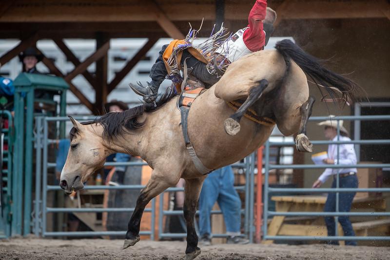 2019 Rodeo 2 (644 of 1380).jpg