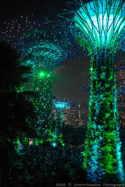 2018-07-18_FunWithFamily@GardensByTheBay_SingaporeSG_72.JPG