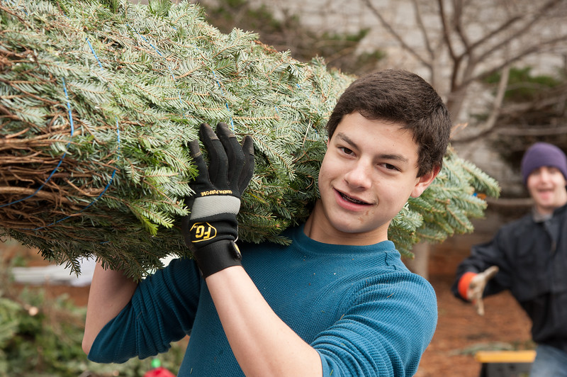 SPC-Trees=2013-0839.jpg