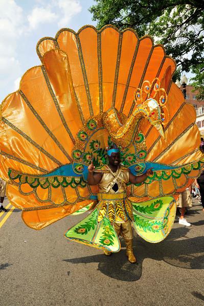 DC Carnival 2010 (140).jpg