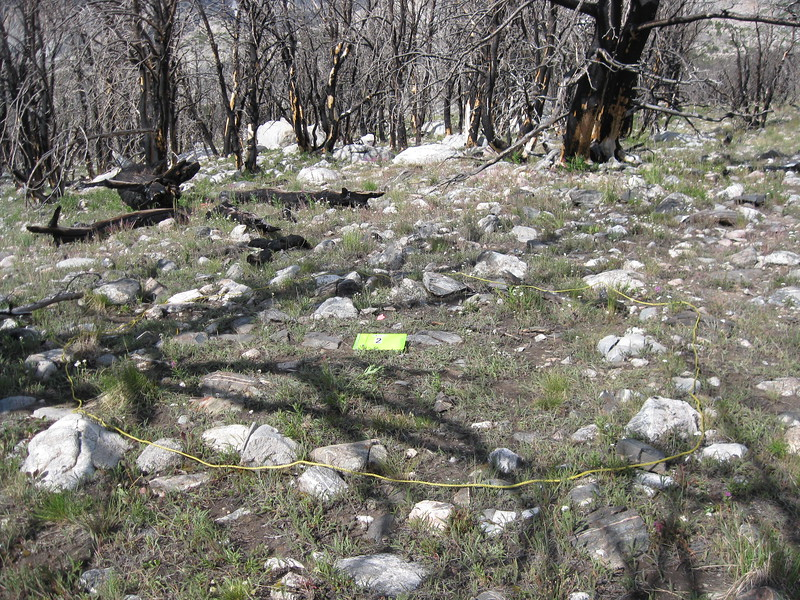 Outline of a cut and fill lodge pad at the Burnt Wickiup Site.