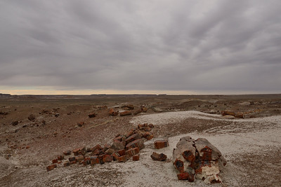 Petrified Forest National Park - Feb 2017