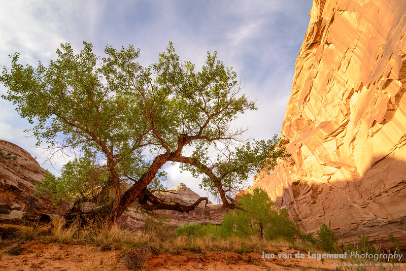 Southwest National Parks and Monuments