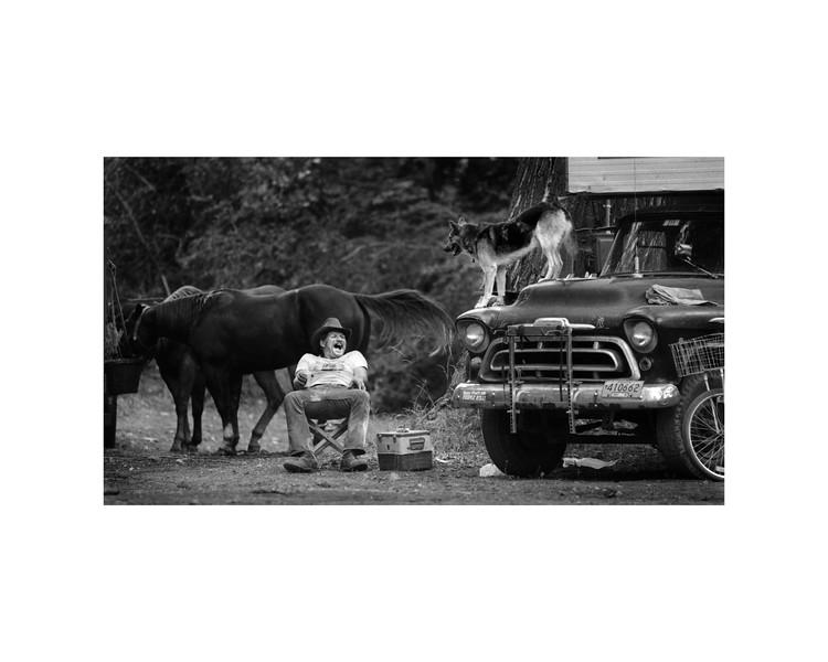 b:w Rodeo Roadie.jpg