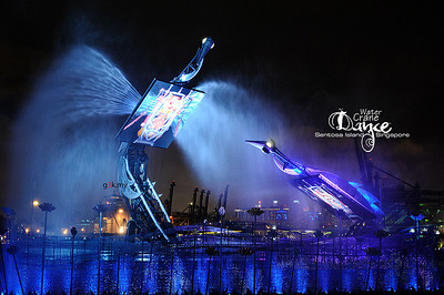 20121225 Water Crane Dance SG