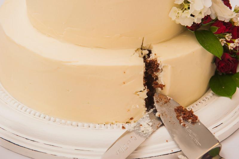 john-lauren-burgoyne-wedding-478.jpg