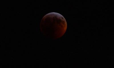 Blood Wolf Moon Jan 2019