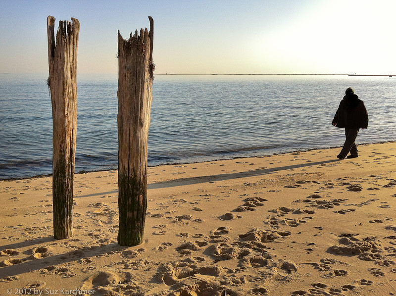 Beach Walker, Shadow and Pilings.jpg