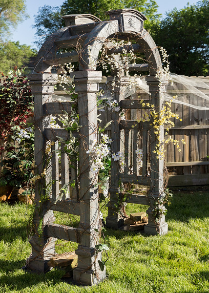 Beautiful Trellis.JPG