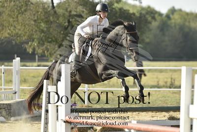 Oak View Equestrian Horse Show (October '19)