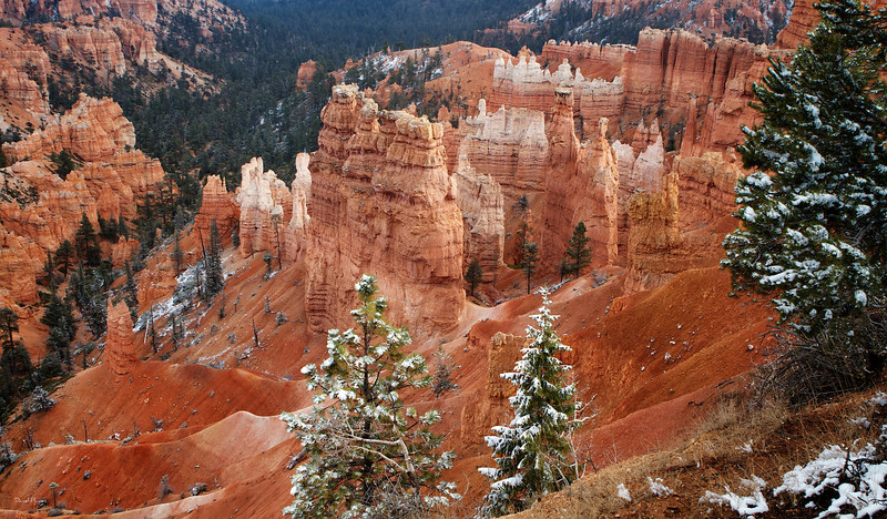 The Majesty Of Bryce