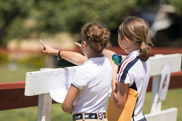 Schooling rounds - Friday - ShowJumping
