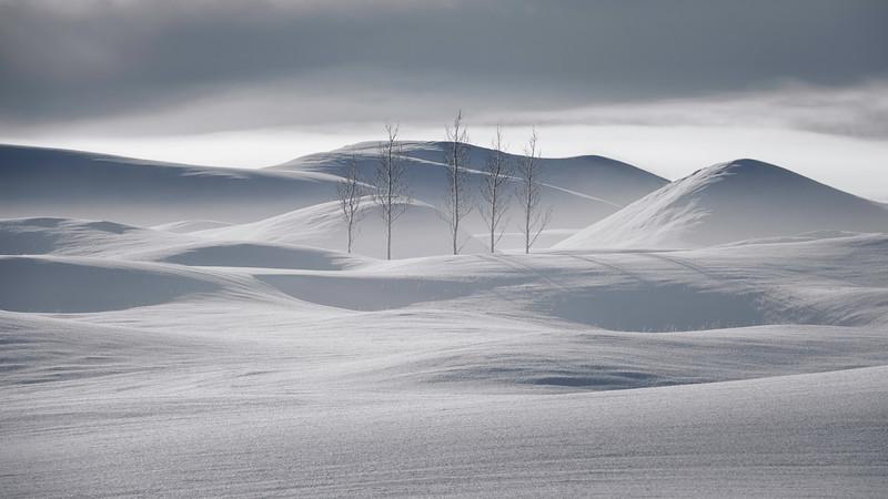 Stillness of Icelandic winter wonderland