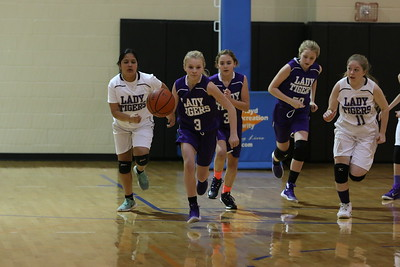 Rome Rec Basketball Lady Tigers vs Lady Tigers Feb.2016