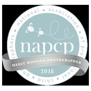 NAPCP award winning burlington oakville newborn photographer 2018