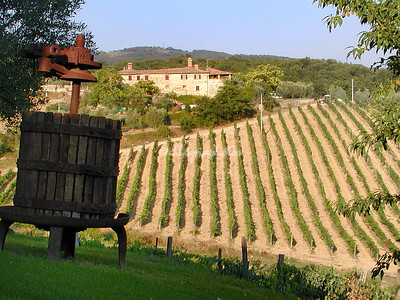 The Chianti Valley