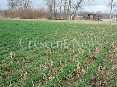 12-29-15 NEWS Wheat