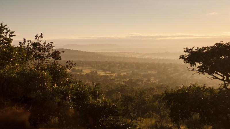 Udsigt, morgendis, Mabula Game Reserve, Limpopo, Sydafrika