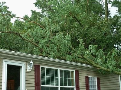 2010-08-13 Storm Damage