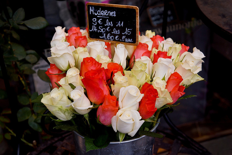 Paris Flores 485.jpg