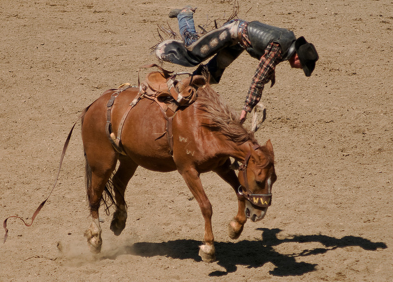 COOMBS RODEO-2009-3688B.jpg