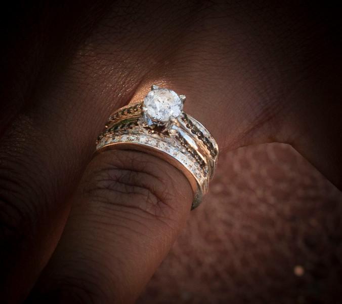 DSC_0401 cropped ring.jpg