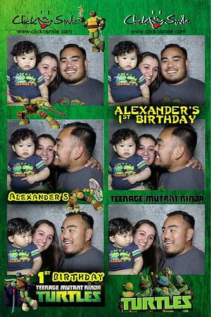 Alexander's 1st Birthday