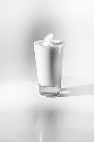 20200208-bw-milksplash-0142.jpg