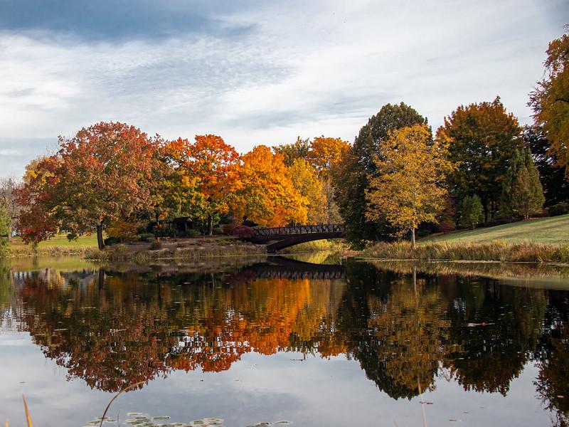 Lake Sacajawea, Longview, WA IMG_0496.jpg