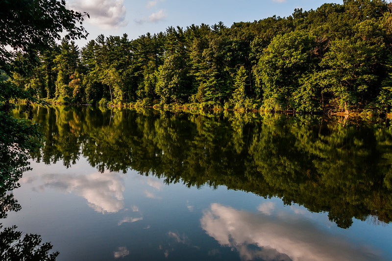 Photo of Lake Williams in York County, Pennsylvania during mid-summer