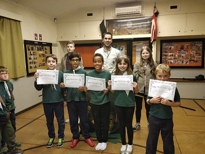 Chief scout silver awards
